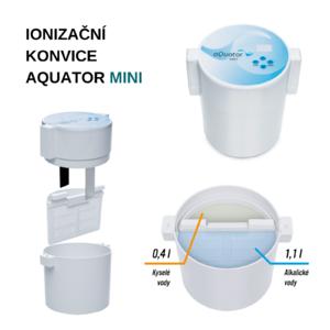 ionizační konvice mini